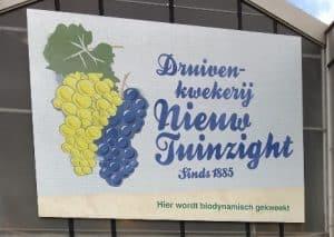 Wat gebeurde er in de winter… bij Druivenkwekerij Nieuw Tuinzight?